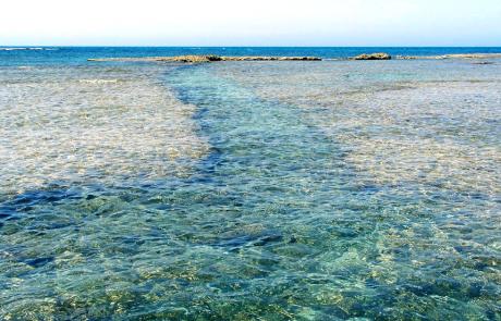 האם חדרה מסמלת את ההזדמנות ההשקעות האחרונה בקו החוף של ישראל?